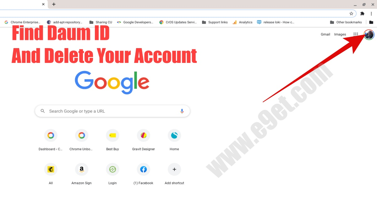 How to Find and use Daum ID to Delete Daum Account